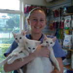 Heather Windle The Cat Clinic Nurse
